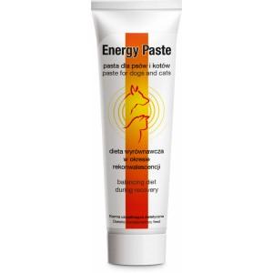 Energy Paste (Энерджи Паста)